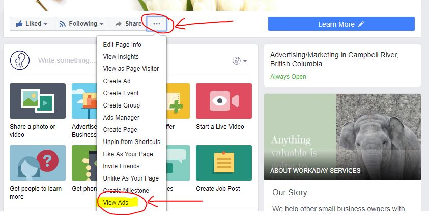 View Facebook Ads on Pages